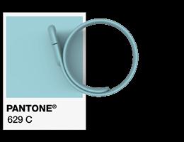 Pantone®色票參考號碼 USB手環創意隨身碟
